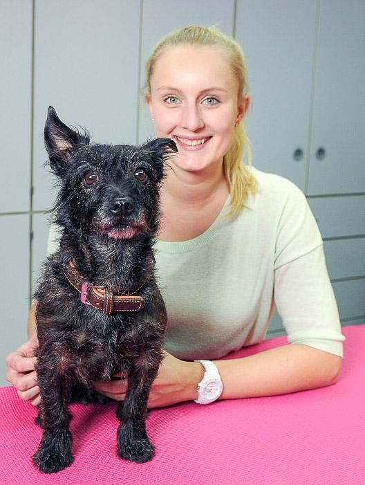 Hundephysiotherapie Syke mit kleinem Hund